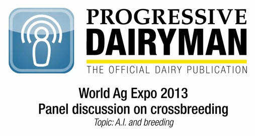 Video of crossbreeding panel at World Ag Expo 2013